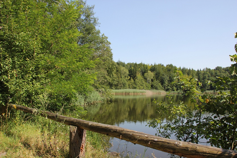 38-Ausblick-über-den-Bunkhofer-Weiher