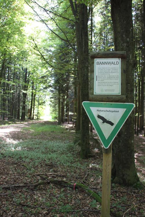 Naturschutzgebiet Brunnenholzried Oberschwaben