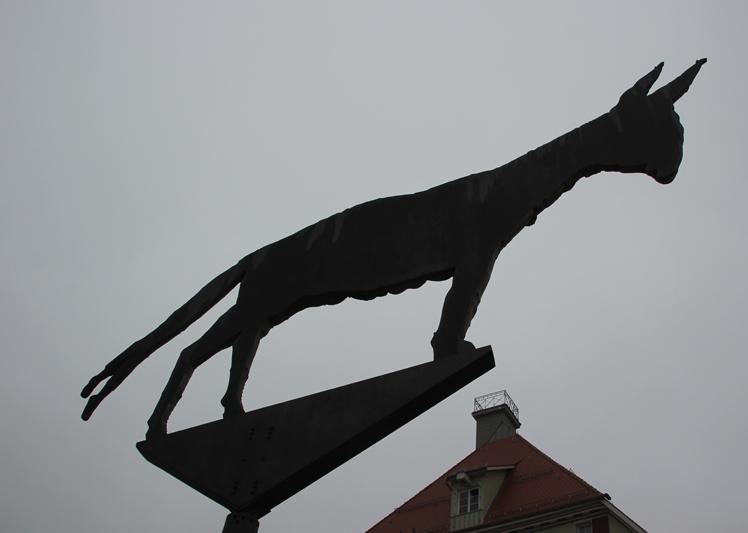 Esel hinten BIberach Marktplatz