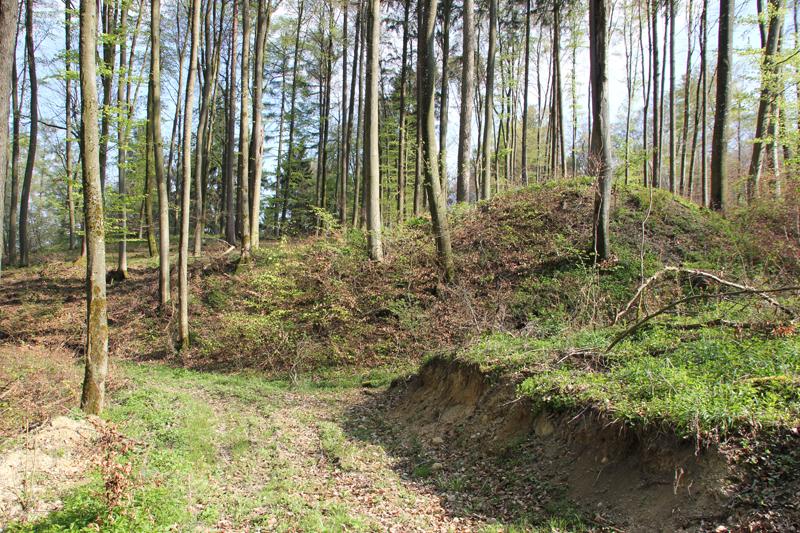 Burgstall Egg bei Ebenweiler