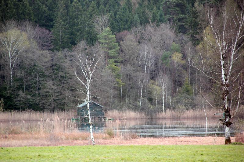 Vorsee Blitzenreuter Seenplatte