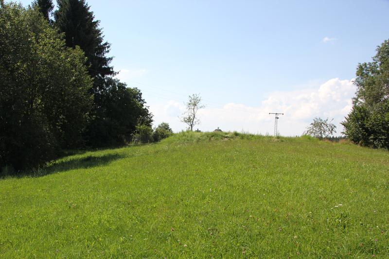 Burgstall Willerazhofen Allgaeu